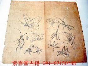 明;芥子园画谱(虫谱1)原始初画.墨勾手稿 #3781