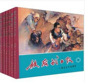 敌后武工队(套装1-6册)