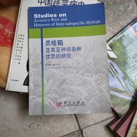 爪哇稻及其亚种间杂种优势的研究