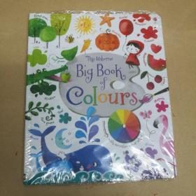 The Usborne Big Book of Coulrs 孩子的色彩启蒙全书(塑封)