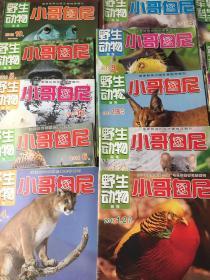 小哥白尼  野生动物10本和售