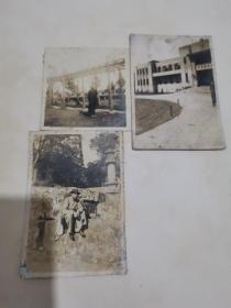 民国原版 文人照片 3张,大学教员在学校,游虎丘留言,美少女在宁都招待所前。民国老照片 约8*6厘米