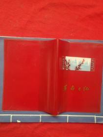 革命日记,塑料皮