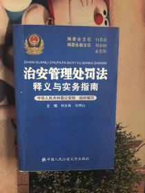 治安管理处罚法 释义与实务指南