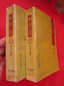 《红楼梦》(上下两册全册)四川文艺出版社  1994年一版一印