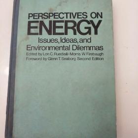 能源展望《争论.概念和环境困境》第二版