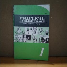 PRACTICAL ENGLISH USAGE (ENGLISH AS A SECOND LANGUAGE)1