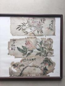 清末民国花卉3挖