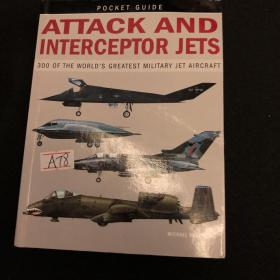 Attack and interceptor jets