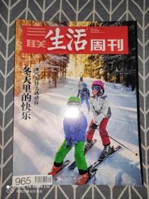 三联生活周刊 2017年第49期 关键词:冬天里的快乐:冰雪为什么诱惑你