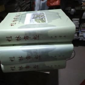 桂林市志上中下市志,中华书局出版,共3册,如图