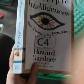 Multiple Intelligences:The Theory In Practice, A Reader