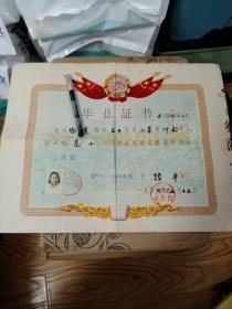 1956年 著名画家老干部谢世莲 毕业证书(有照片 有毛主席头像)