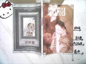 最小说2009 17