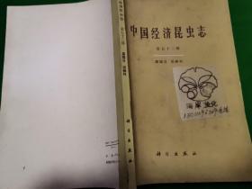 中国经济昆虫志.第五十二册.膜翅目 泥蜂科