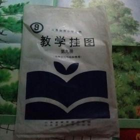 九年义务教育教学挂图 小学自然第九册
