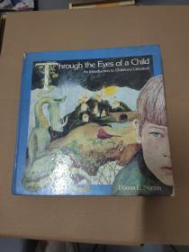 Through the Eyes of a Child : An Introduction to Children`s Literature-通过孩子的眼睛:对儿童文学的介绍(英文原版)