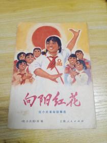 向阳红花(红小兵革命故事选)