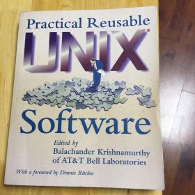 Practical reusable software