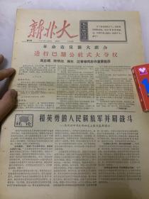 文革报纸-新北大两期合售