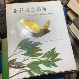 蒂科与金翅膀