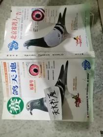 北京赛鸽天地广告2005年7月  品相如图