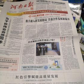河南日报2020年11月19日
