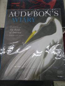 Audubon's Aviary: the Original Watercolors for the Birds of America【英文原版 精装 私藏 品好】