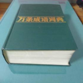 万条成语词典