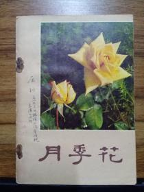 月季花 (配彩色插图69幅)