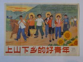 【16】1965年9月《上山下乡的好青年》新闻展览照片农村普及版,一套13张全,页面好品相。