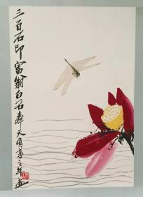 《蜻蜓荷花》