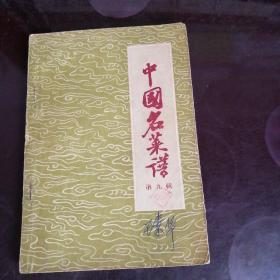 中国名菜谱第九辑