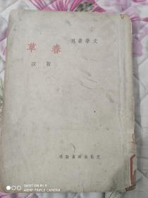 民国文学丛刊《春草》初版