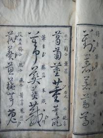 《草字汇》,存寅、卬、申、酉四集,清朝乾隆年木刻板,四集合订两册。 规格26.2*16*2cm