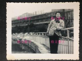 老照片 文革 美女 很漂亮 画面好 背后 毛泽东思想万岁! 4张 合售