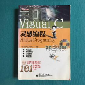 Visual C灵感编程