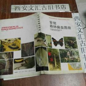安徽森林病虫图册