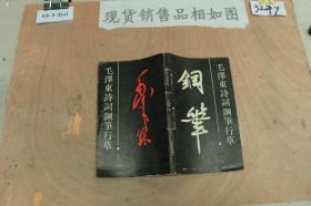 毛泽东诗词钢笔行书