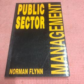 PUBLlC SECTOR MANAGEMENT FLYNN