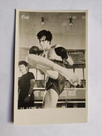 """狄龙,拳击片中照片一张,(Tommy Tam),本名谭富荣,1946年8月19日生于广东新会,中国香港动作演员、导演、编剧。狄龙威武帅气,一向以硬汉形象示人,是武侠电影中的美男子,深得观众的青睐,并且与李小龙、梁小龙、成龙并称""""香港四小龙"""",虽贵为影帝,但对待工作还是非常严谨认真。他的武打招式丰富多彩,主演的电影曾在港台东南亚风靡一时,他的演技也声誉遐迩。"""