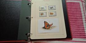 蝴蝶邮票定位册