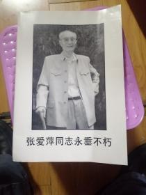 张爱萍同志永垂不朽》