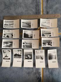 七十年代青岛风光风景老照片14张一套 青岛鲁迅公园前海栈桥远景海产博物馆中山公园小西湖前海沿海水浴场体育场等等景点