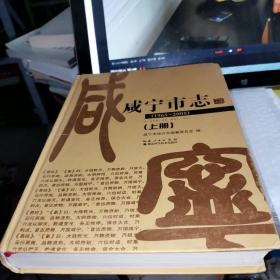 咸宁市志 : 1965~2005 : 上册