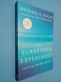 The Surrender Experiment:My Journey into Life's Perfection