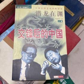 潜龙在渊:交锋后的中国:中国经济发展战略研究 上