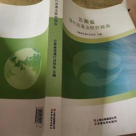 云南省现代流通业研究报告