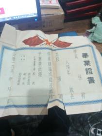 天津军医大学毕业证书195