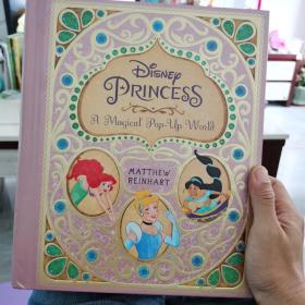 Disney Princess :a magical pop-up word   英文原版立体书